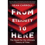 From Eternity to Here (BOK)