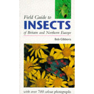 Field Guide to Insects of Britain and Northern Europe (BOK)