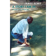 A Story I am in: Selected Poems (BOK)