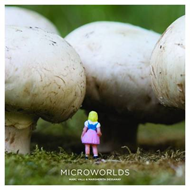 Microworlds (BOK)