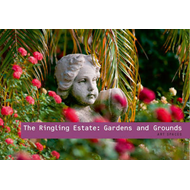 Grounds and Gardens: The John and Mable Ringling Museum of Art; Art Spaces (BOK)