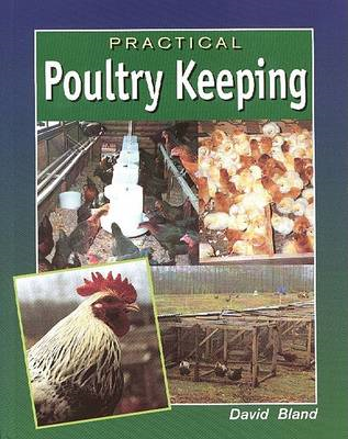 Practical Poultry Keeping (BOK)