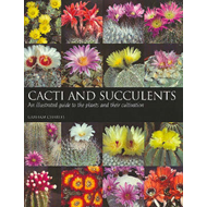 Cacti and Succulents (BOK)