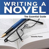 Writing a Novel (BOK)