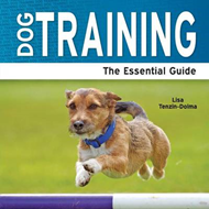Dog Training: The Essential Guide (BOK)
