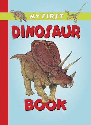 My First Dinosaur Book (BOK)