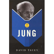 How to Read Jung (BOK)