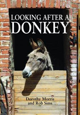 Looking After a Donkey (BOK)