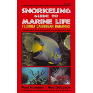 Snorkeling Guide to Marine Life (BOK)