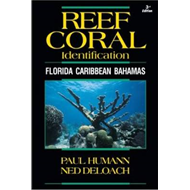 Reef Coral Identification (BOK)
