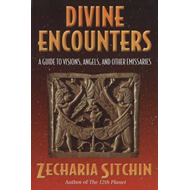 Divine Encounters: A Guide to Visions, Angels and Other Emissaries (BOK)
