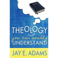 Theology You Can Really Understand (BOK)