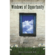 Windows of Opportunity (BOK)