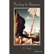 Theology for Beginners (BOK)