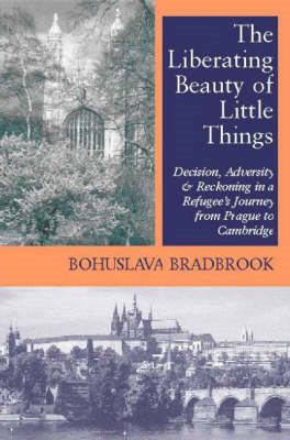 Liberating Beauty of Little Things (BOK)