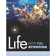 Life with Full Attention (BOK)