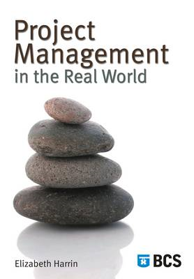 Project Management in the Real World: Shortcuts to Success (BOK)