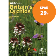 Produktbilde for Britain`s Orchids (BOK)