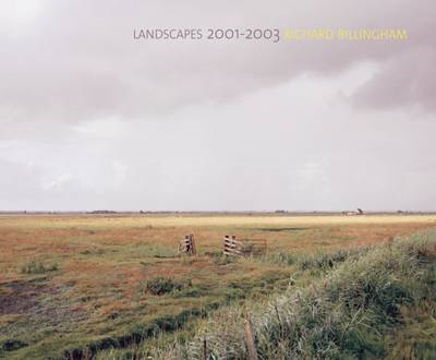 Richard Billingham: Landscapes: 2001-2003 (BOK)