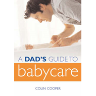 A Dad's Guide to Babycare (BOK)