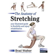 Anatomy of Stretching (BOK)