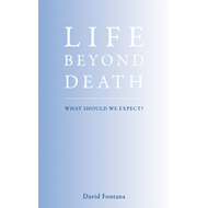 Life Beyond Death: The Nature of the Afterlife (BOK)