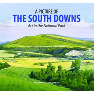 A Picture of the South Downs: Art in the National Park (BOK)