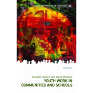 Youth Work in Communities and Schools (BOK)