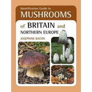 Identification Guide to Mushrooms of Britain and Northern Eu (BOK)