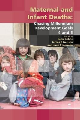 Maternal and Infant Deaths: Chasing Millennium Development Goals 4 and 5 (BOK)