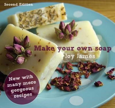 Make Your Own Soap (BOK)