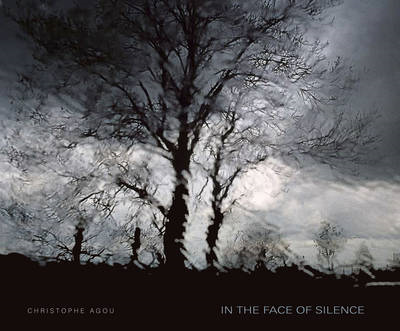 In the Face of Silence (BOK)