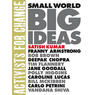 Small World Big Ideas (BOK)
