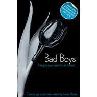 Bad Boys: When Men Come Together (BOK)