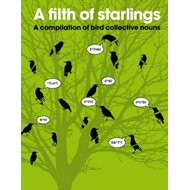 A Filth of Starlings (BOK)