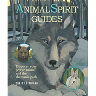 Animal Spirit Guides (BOK)