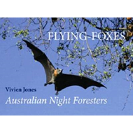 Flying Foxes (BOK)