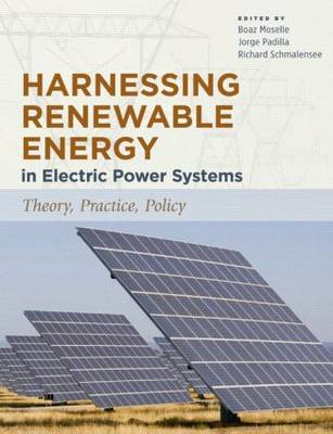 Harnessing Renewable Energy in Electric Power Systems: Theory, Practice, Policy (BOK)