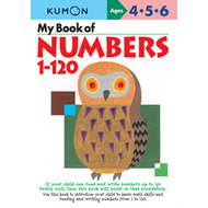 My Book of Numbers 1-120 (BOK)