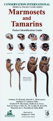 Marmosets and Tamarins: Pocket Identification Guide (BOK)