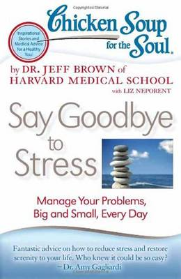 Chicken Soup for the Soul: Say Goodbye to Stress: Manage Your Problems, Big and Small, Every Day (BOK)