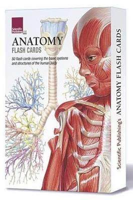 Anatomy Flash Cards (BOK)