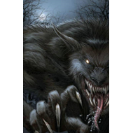 Grimm Fairy Tales Presents: Vampires and Werewolves (BOK)