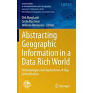 Abstracting Geographic Information in a Data Rich World (BOK)