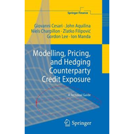Modelling, Pricing, and Hedging Counterparty Credit Exposure (BOK)