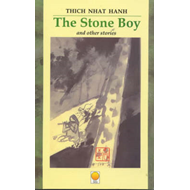The Stone Boy and Other Stories (BOK)