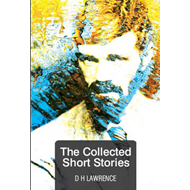 The Collected Short Stories (BOK)