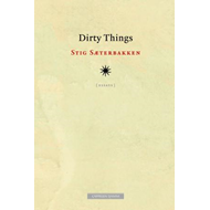 Dirty things - essays (BOK)