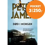 Produktbilde for Død i morgen (BOK)