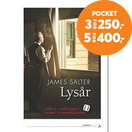 Produktbilde for Lysår (BOK)
